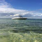 Everglades Miami et Croisiere Miami : Dauphins, Keys
