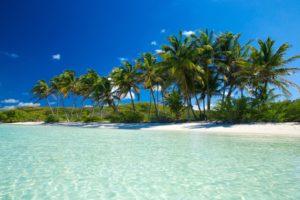 Circuit Floride et Croisiere Miami en Français