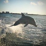 Croisiere Miami : Circuit Floride et Rêver
